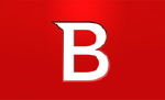 Logo_BitDefender Enterprise Manager